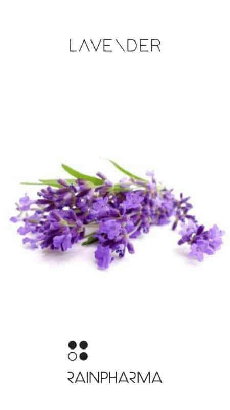 Eigenschap RainPharma essentiële olie - Lavender