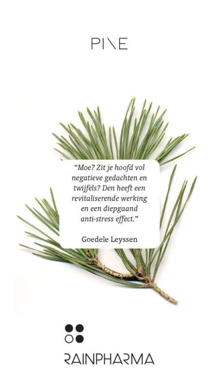 Eigenschap RainPharma essentiële olie - Pine