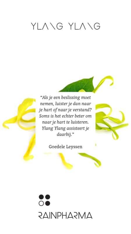 Eigenschap RainPharma essentiële olie - Ylang Ylang